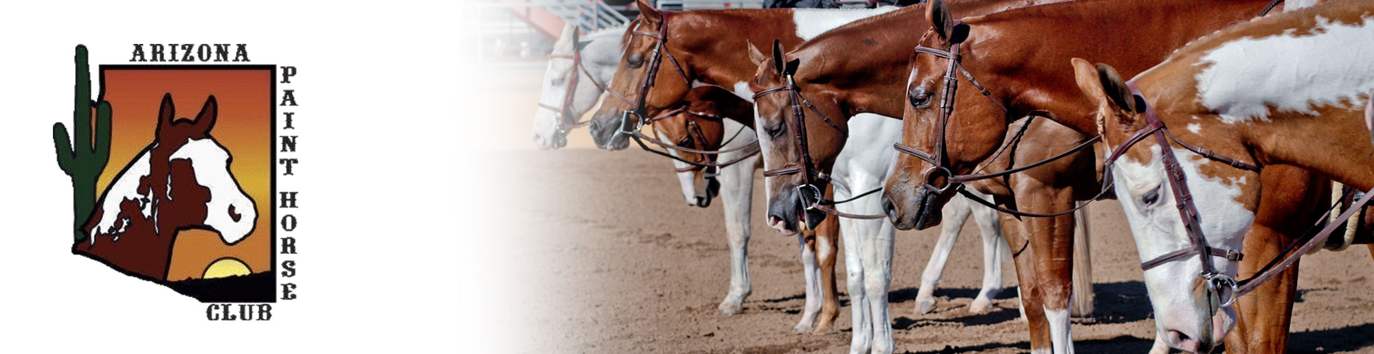Arizona Paint Horse Club
